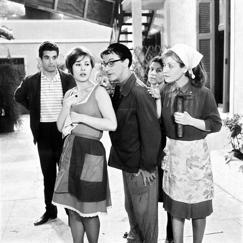Οι κυρίες της αυλής 1965-1966